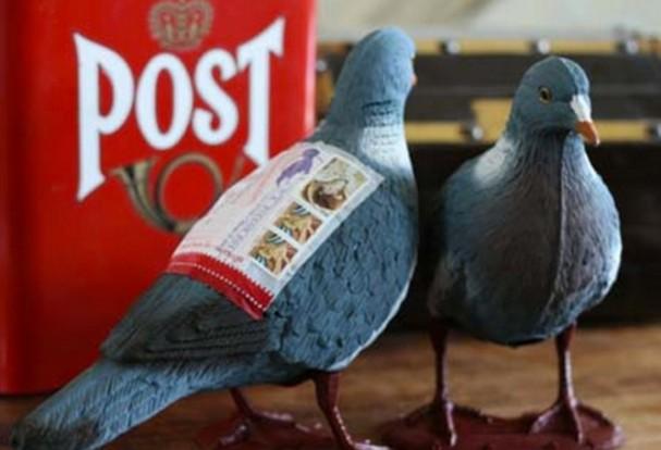 plastic-post-duif-607x414